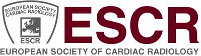 ESCR Educational Workshop - Module 1: CT primer for radiologists (27-28.04.15)