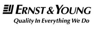 Ernst&Young2013320x1014.jpg