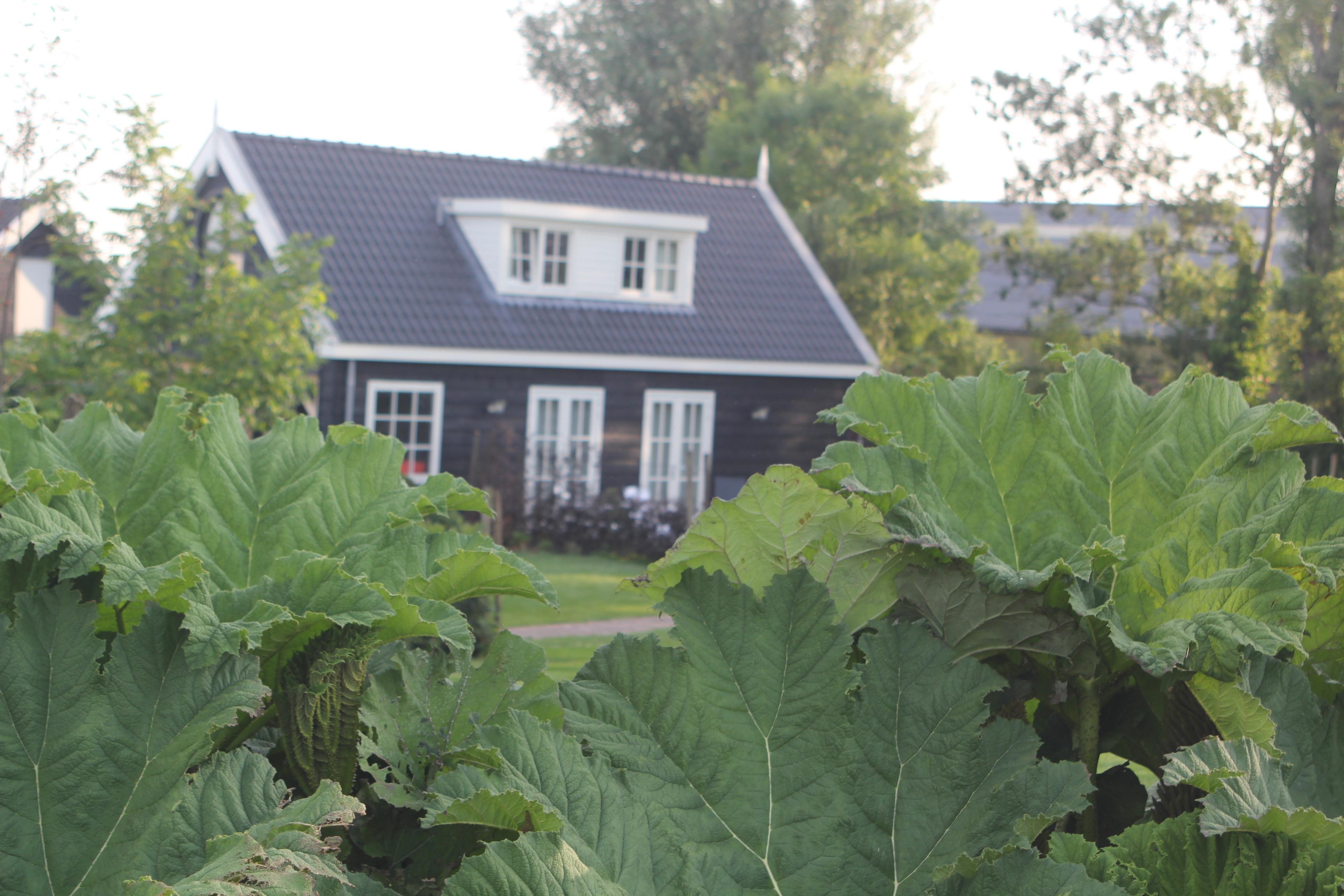 Het Koetshuis - Midden in 'Het groene hart van Holland'