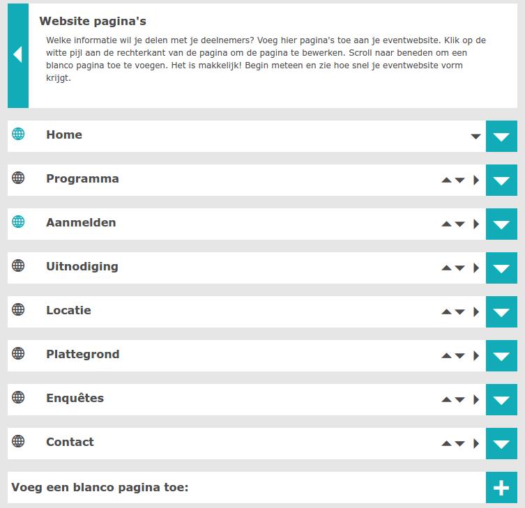 Website pagina's