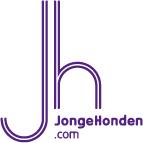 JongeHonden: Netwerken in Zwolle