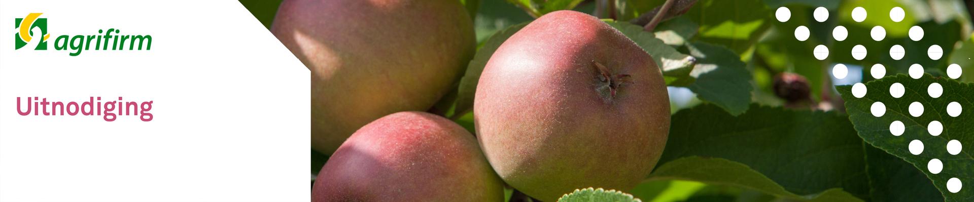 Relatiedag Fruitteelt Randwijk